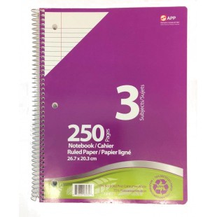 Cahier spirale 250 pages 3 sujets