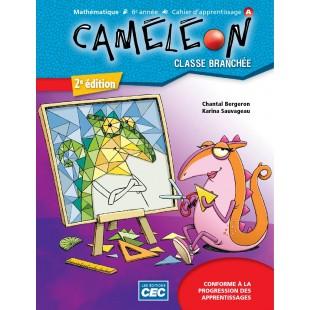 Caméléon 6e année cahier mathématique